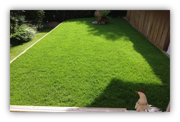 4fa3ebcd9d We now supply a Supreme Shade and Wear Turf containing a rare alpine seed  variety that has unrivalled shade tolerance. Our Supreme shade and wear turf  has a ...
